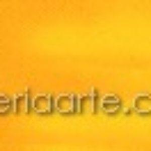Oleo 29 Amarillo Titan Oscuro 20ml TITAN Extrafino