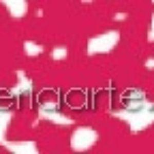 318.5 Pastel Rembrandt Carmin