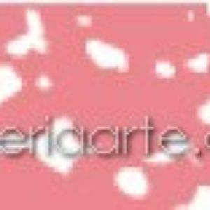 318.8 Pastel Rembrandt Carmin
