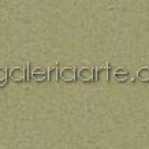 480 Verde Almendra 75x110cm 25 unidades