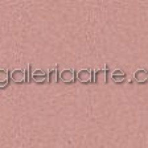 352 Rosa Oscuro 50x65cm 3 unidades