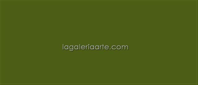 Textile Color Opaco 57 Verde Musgo 60ml