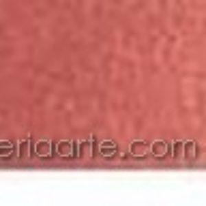 Acuarela WINSOR & NEWTON Cotman nº317 Rojo Indio