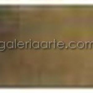 426- Acuarela REMBRANDT Serie2 Pardo Oxido Trans. 5ml