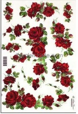 Calca Rosas Rojas 231