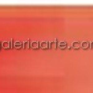 Acuarela Nº306 Rembrandt Rojo Cadmio Oscuro Pastilla