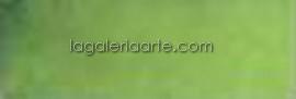 Acuarela Nº620 Rembrandt Verde Oliva. Pastilla