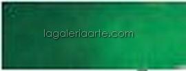 Acuarela Nº645 Rembrandt Verde Hooker Oscuro. Pastilla