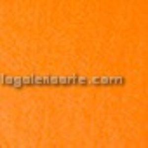 Papel de Seda Naranja 25 Hojas