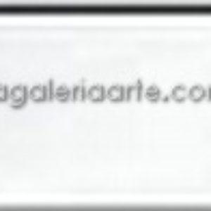 119- Oleo REMBRANDT Blanco Transparente 40ml