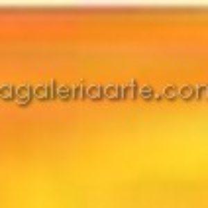 251- Oleo REMBRANDT Stil Grain Amarillo 40ml