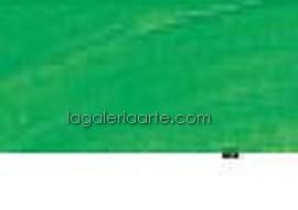 614- Oleo REMBRANDT Verde Perm Medio 40ml