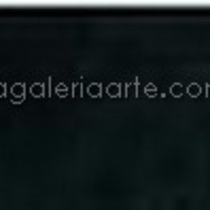 701 negro marfil van gogh 20ml