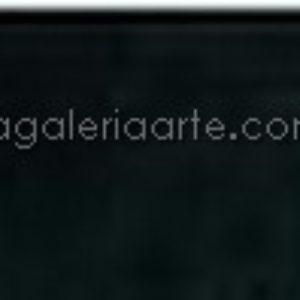 701 negro marfil van gogh 200ml