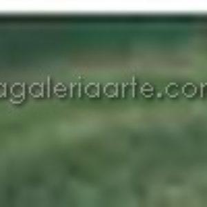 629- Oleo REMBRANDT Tierra Verde 150ml