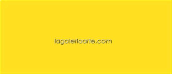 Textile Color opaco 12 Amarillo 200ml