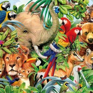 Mundo Animal 500P